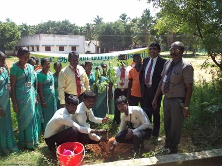 Tree Plant 003